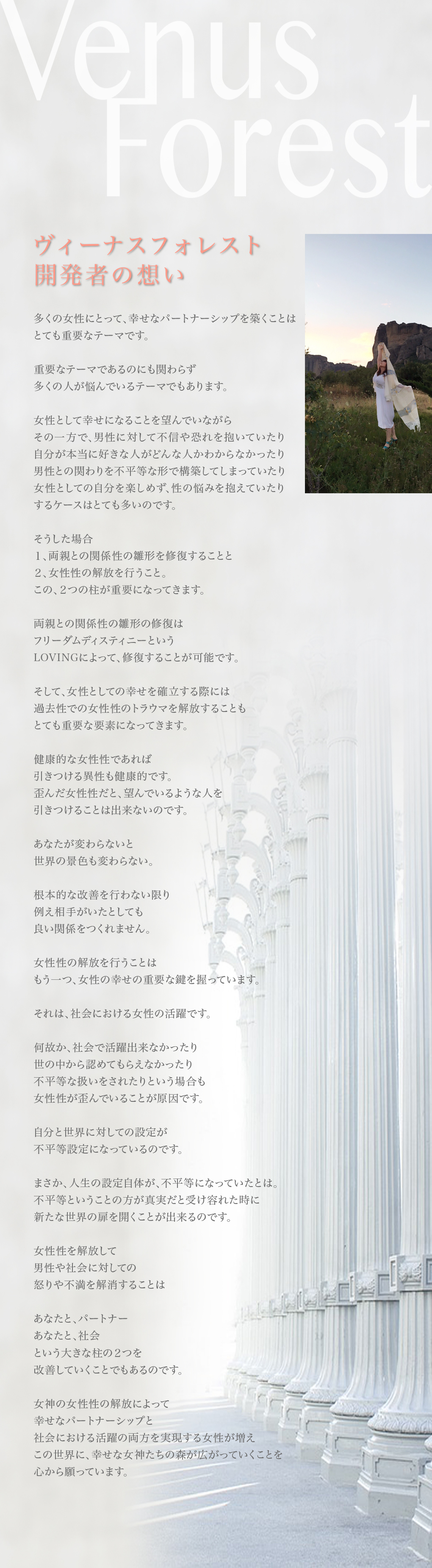 VF-開発者